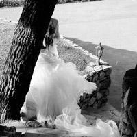 Noir & blanc, l