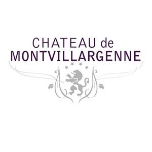Le château de Montvillargenne