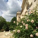 Château SG